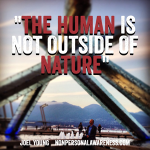 The Human Is Not Outside Of Nature